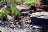 stone and rock landscaping